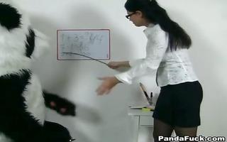 hot teacher for lewd panda bear